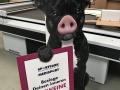 Wellpappaufsteller-Schweinehund