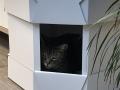Katzenhaus-Wabenplatten